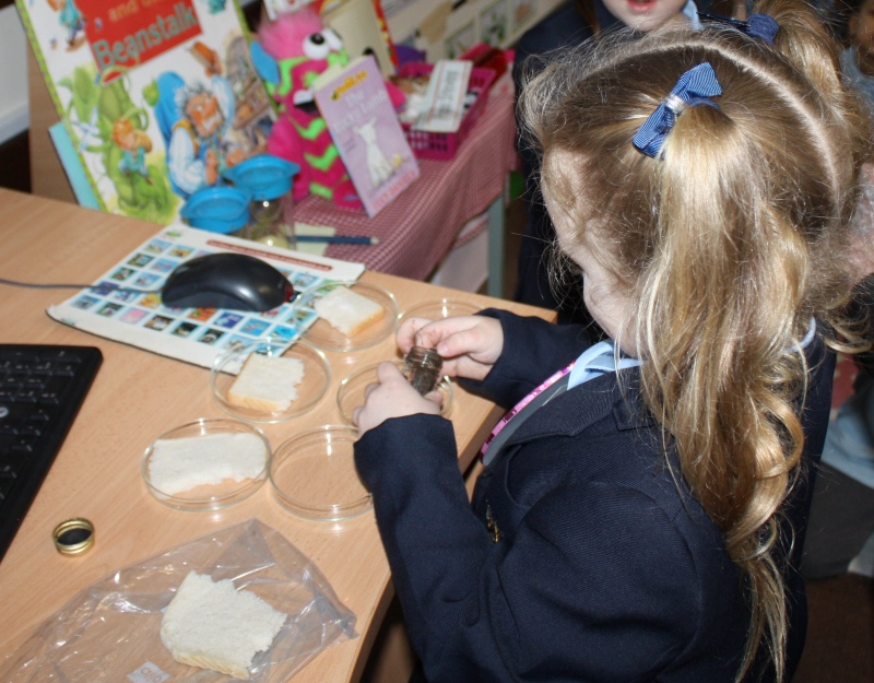 St. Dominic's Grammar School nursery pupils learning science